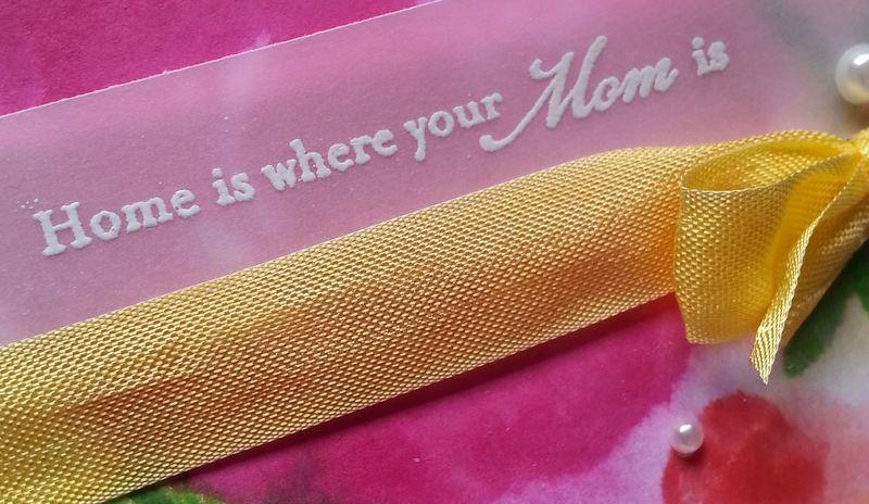 MotherInLaw050514CloseUp_WEB